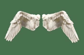 Feenflügel